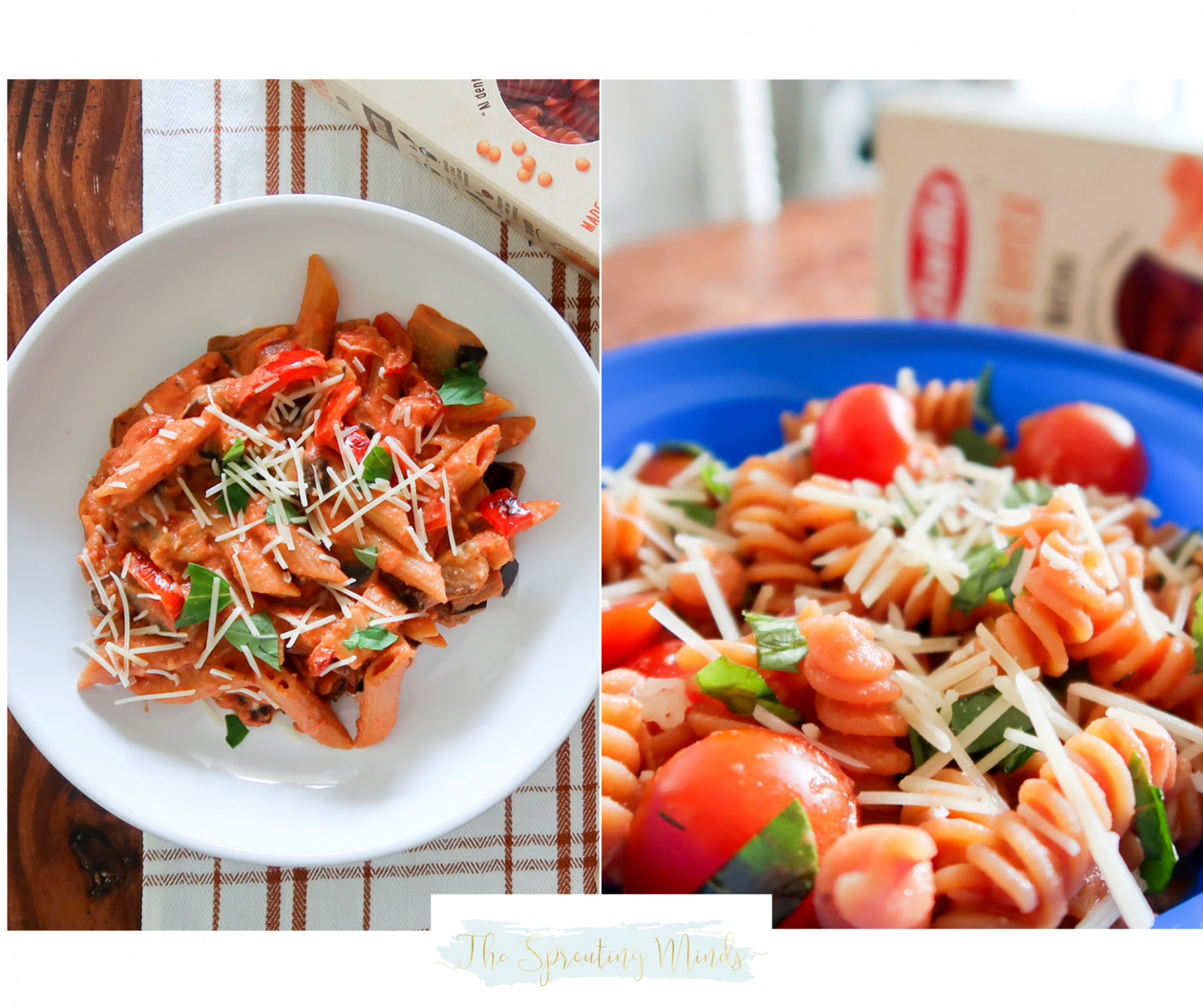Red Lentil Penne with Eggplant & Red Pepper - healthy recipes plant based