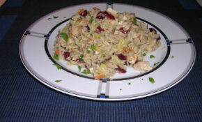 Rice Bowl With Chicken, Leeks And Dried Cranberries – No Carb Recipes Dinner