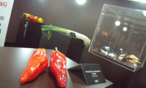 Salone Del Gusto – Museum Of Local Products (we're Strong In Thistles And Peppers..