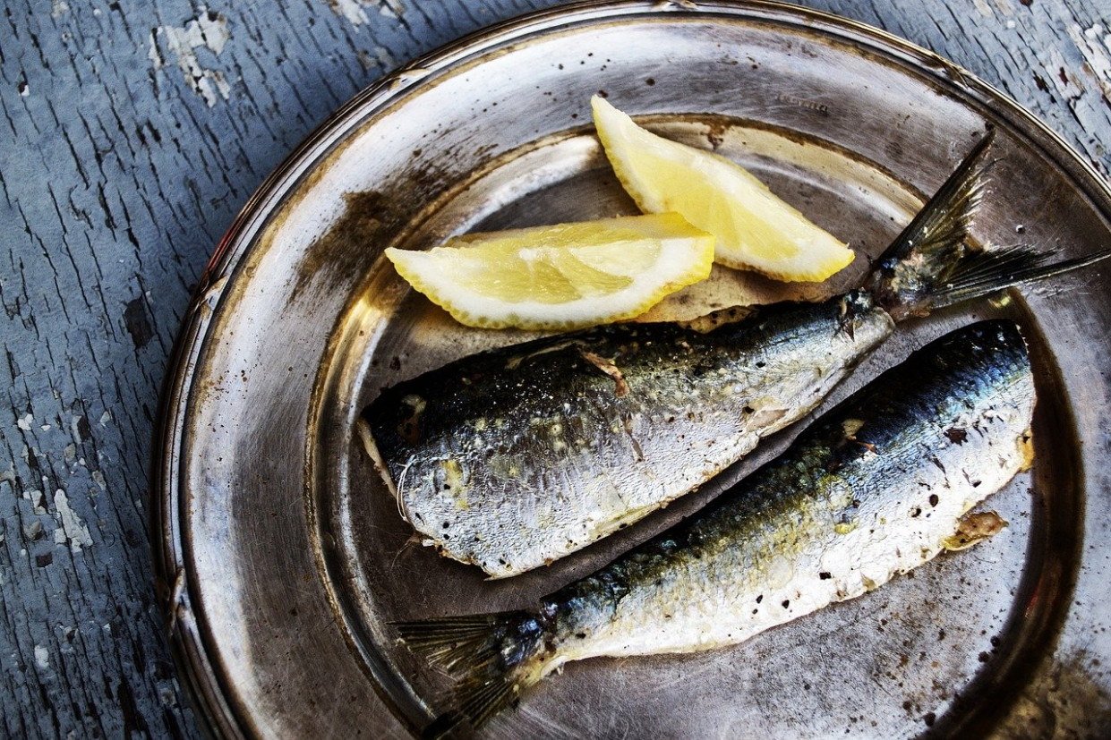 Sardines, Fish Pictures, Fish, Sea Food - healthy recipes tasty