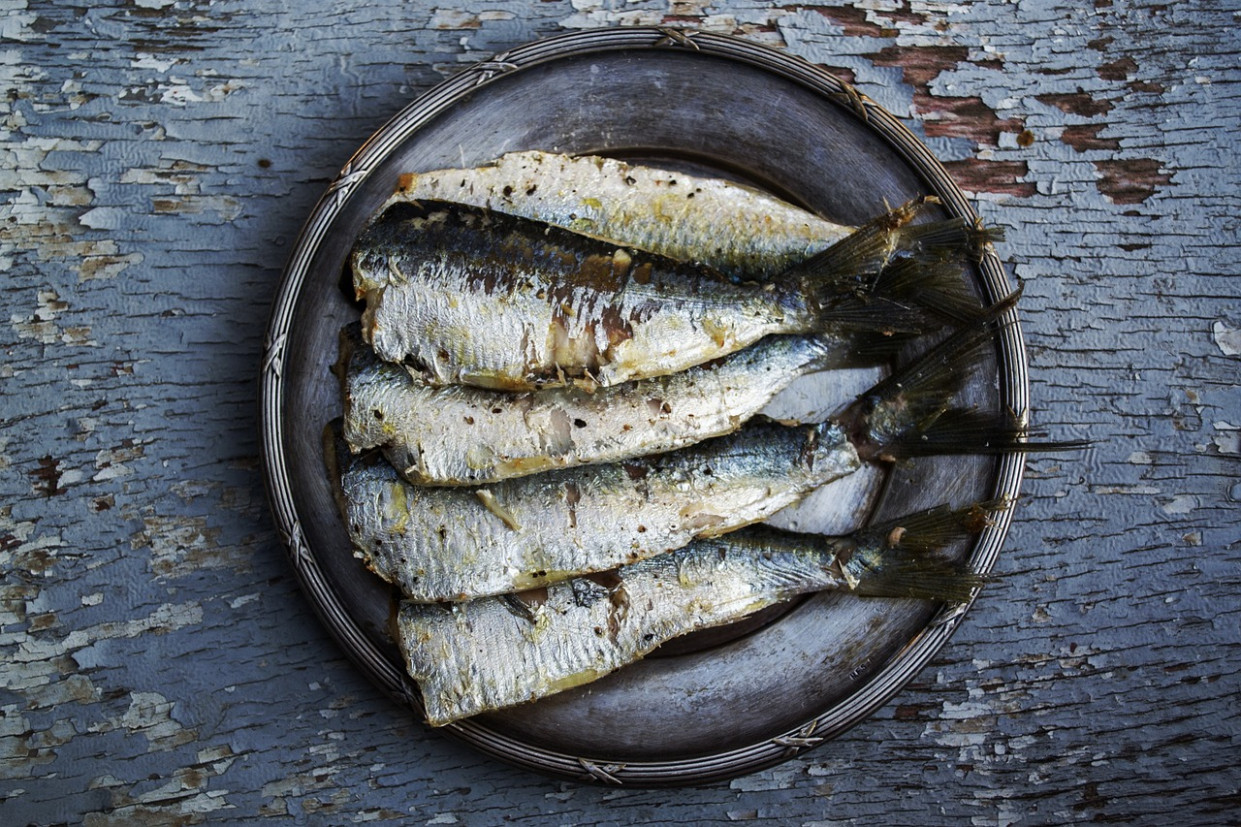 Sardines, Fish, Plated Food, Food - healthy recipes delicious