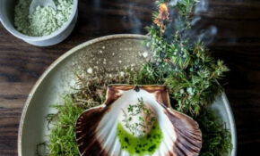 Scallops With Fresh Juniper Berries And Snow Infused With ..