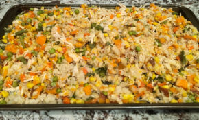 Scooby's Organic Stew For Dogs – Happy And Yummy – Recipes Just Food For Dogs