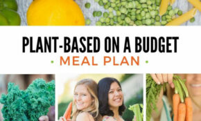 Shop – Plant Based On A Budget – Vegetarian Recipes On A Budget