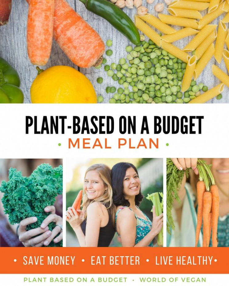 Shop - Plant Based on a Budget - vegetarian recipes on a budget