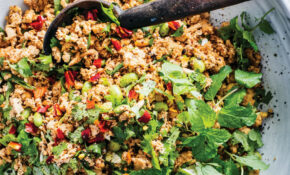 Shredded Tofu With Spicy Ground Chicken And Edamame – Recipes For Shredded Chicken