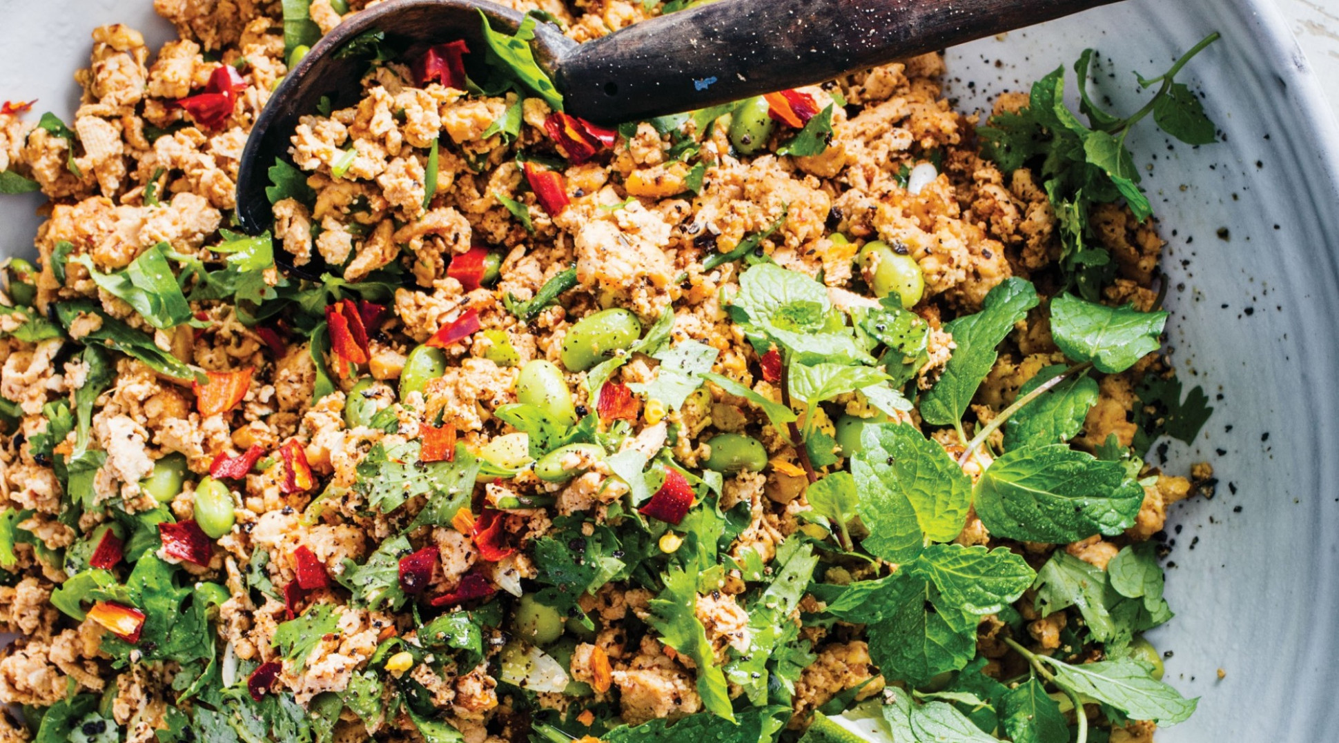 Shredded Tofu With Spicy Ground Chicken And Edamame - Recipes For Shredded Chicken
