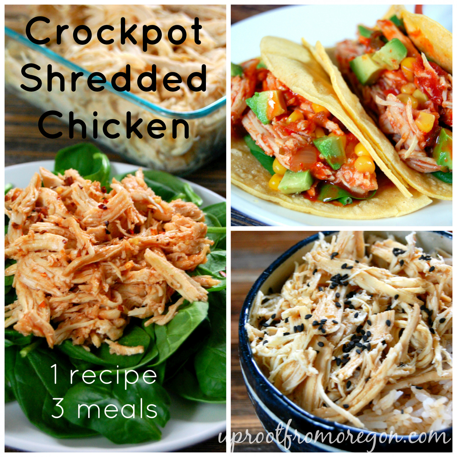Slow Cooker Shredded Chicken - recipes made with shredded chicken