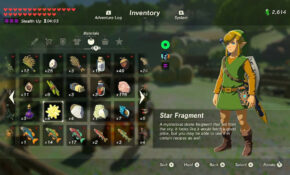 Star Fragment Recipe Zelda Breath Of The Wild | Treeofflife.org