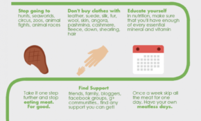 Step By Step Guide To Adopt A Vegan Lifestyle | Vegan ..