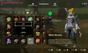 Temporarily Increase Stamina Botw, Log In To GameFAQs – Best Food Recipes Zelda Breath Of The Wild