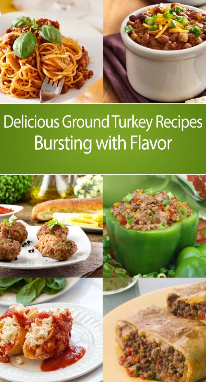 The 25+ Best Minced Turkey Recipes Ideas On Pinterest ..