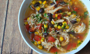 The BEST Chicken Soup Ever Recipe | Budget Savvy Diva – Best Recipes Chicken