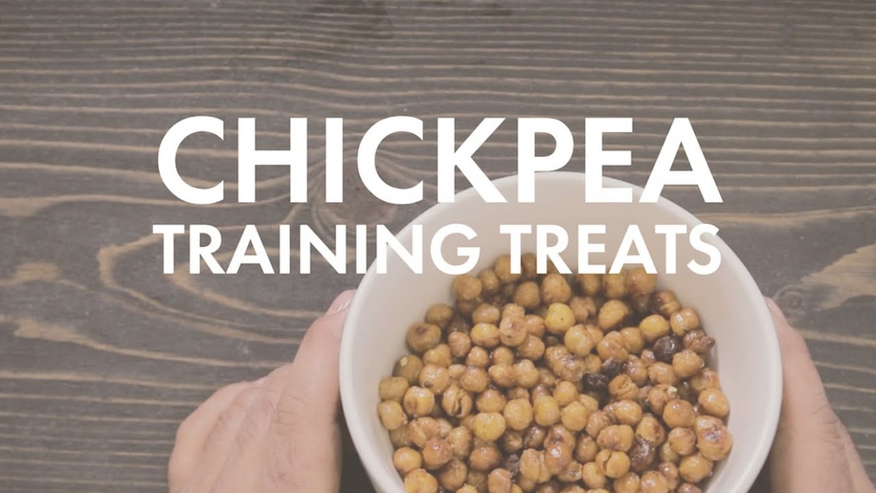 The Dog Chef - Dog Food, Pet Store, Rescue Dogs - Recipes To Make Your Own Dog Food
