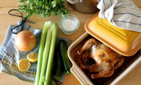 The Drinkable Flu Shot: Chicken Soup With Bone Broth – Chicken Recipes Using Chicken Stock