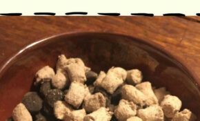 The Easiest Way To Introduce Raw Food To Your Dog #mixitup ..