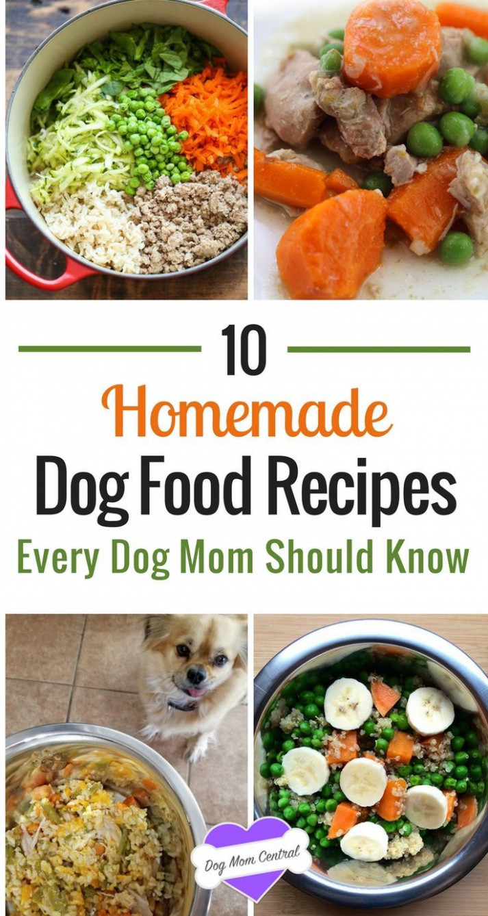 To get inspired, here are 10 easy and nutritious dog food ..