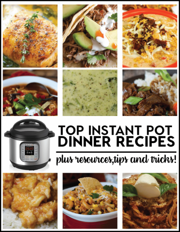 Top Instant Pot Recipes to Try and Resources - instant pot recipes dinner