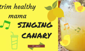 Trim Healthy Mama Recipe || Singing Canary || Is It Worth All The Work? – Trim Healthy Mama Recipes