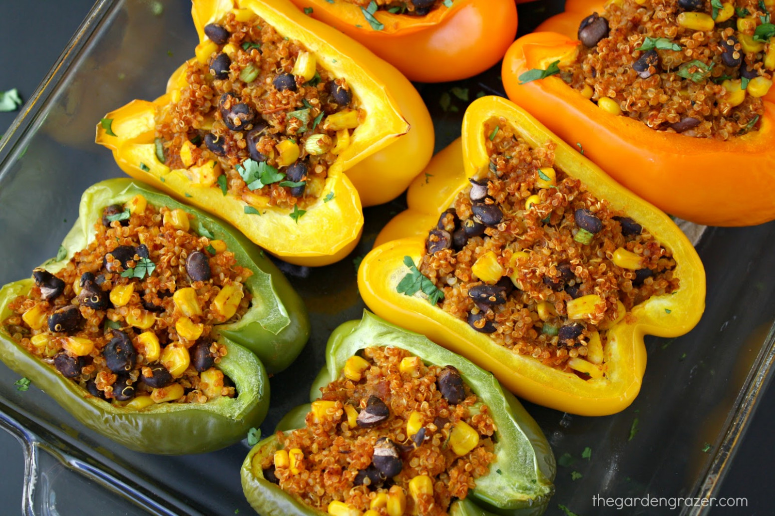 Ultimate List Of Vegan Mexican Recipes | The Garden Grazer - Mexican Food Recipes With Pictures