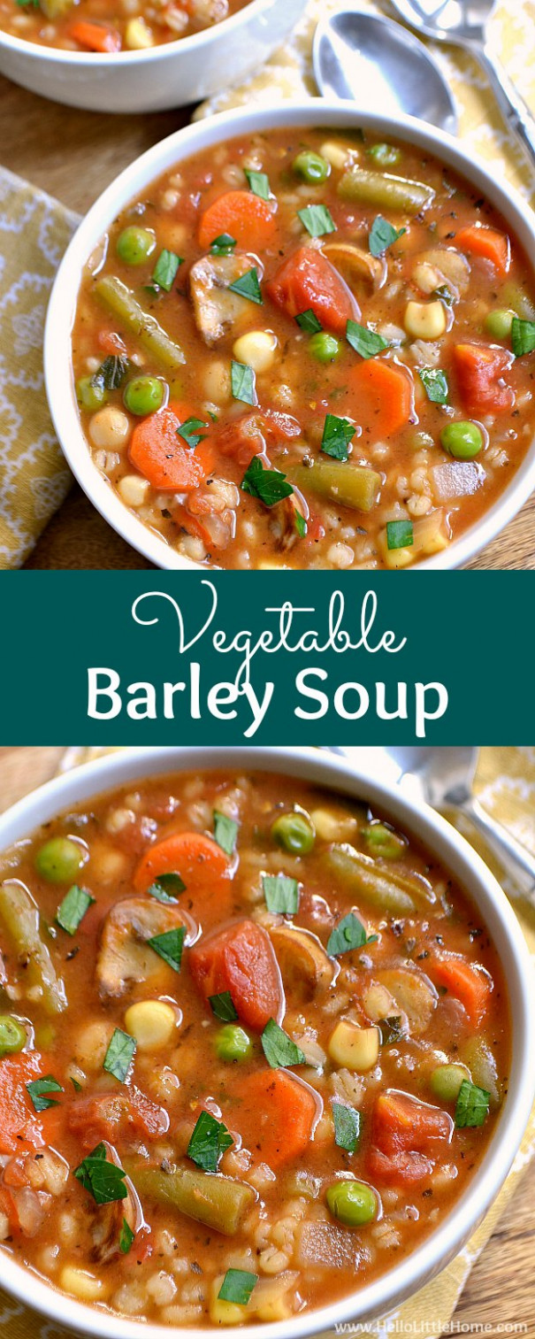 Vegetable Barley Soup - Easy Soup Recipes Vegetarian