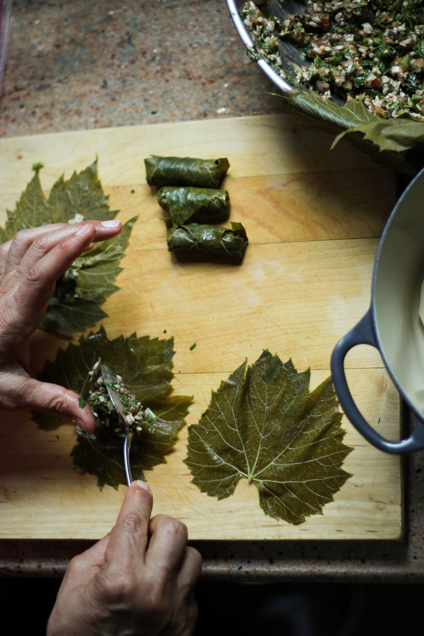 vegetarian stuffed grape leaves | MEDITERRANEAN | Stuffed ..