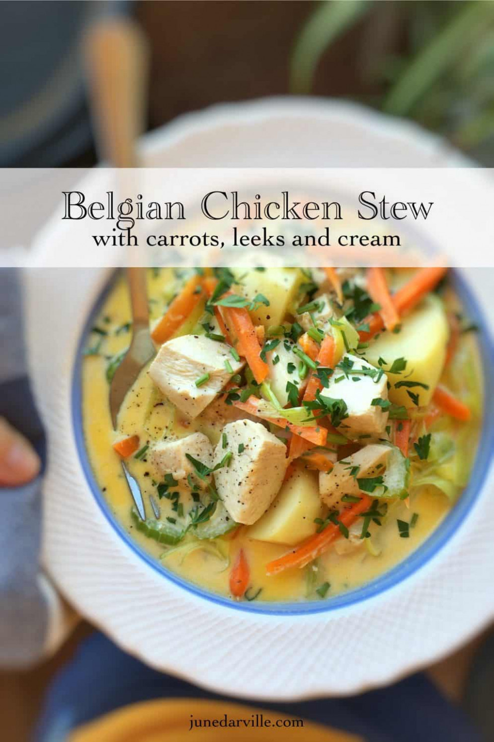 Waterzooi (Belgian Chicken Stew Recipe) | Simple. Tasty. Good