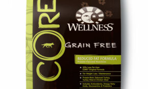Wellness CORE Natural Grain Free Reduced Fat Recipe Dry Dog Food, 15 Lbs