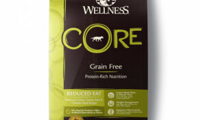 Wellness CORE Reduced Fat Dry Dog Food, 15 Pound Bag High ..