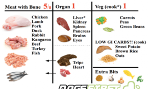 What To Feed A Pregnant Dog | Dogs First – Recipes Raw Food Diet For Dogs