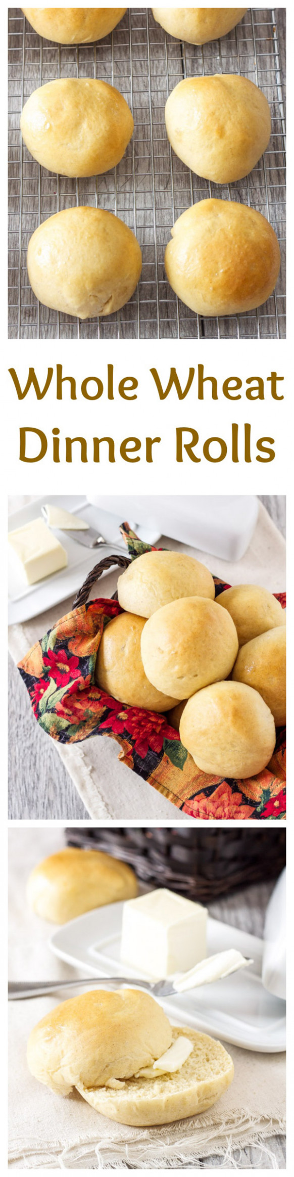 Whole Wheat Dinner Rolls - dinner roll recipes
