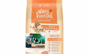 WholeHearted All Life Stages Chicken And Brown Rice Recipe Dry Dog Food, 11  Lbs