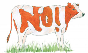 Why Eating Less Meat Is Easy To Say And Not So Easy To Do ..