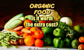 Why Is Organic Food More Expensive? | All Natural Ideas – Organic Food Recipes