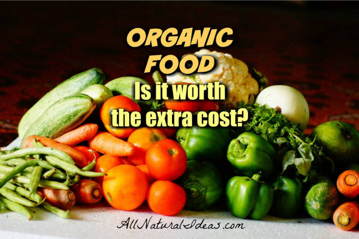 Why Is Organic Food More Expensive? | All Natural Ideas - organic food recipes