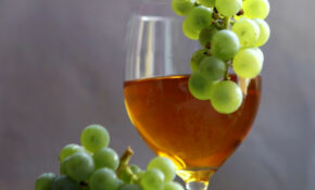 Wine, Vintage, Vines, Healthy Food – Recipes Light And Healthy