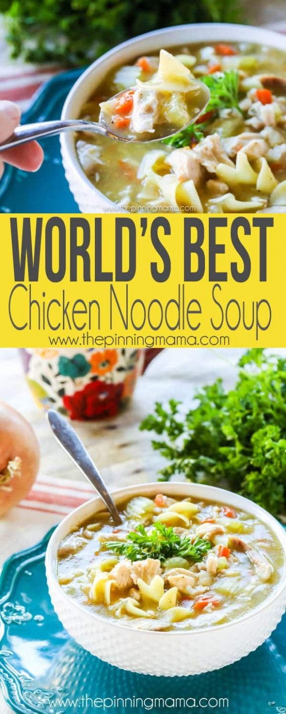 World's Best Chicken Noodle Soup - Recipes Homemade Chicken Soup