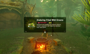 Zelda: BOTW (Best Stamina Recipe – Enduring Fried Wild ..