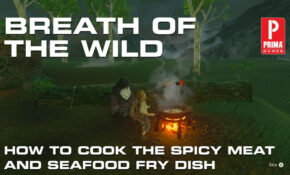 Zelda: Breath Of The Wild – How To Make Spicy Meat And ..